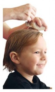 hair lice treatment