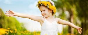 daffodil_slider