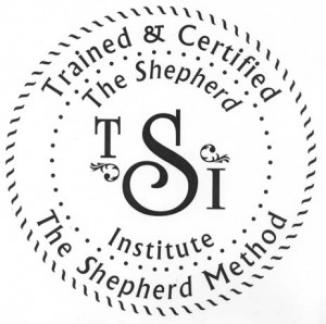 TSI Certification Logo